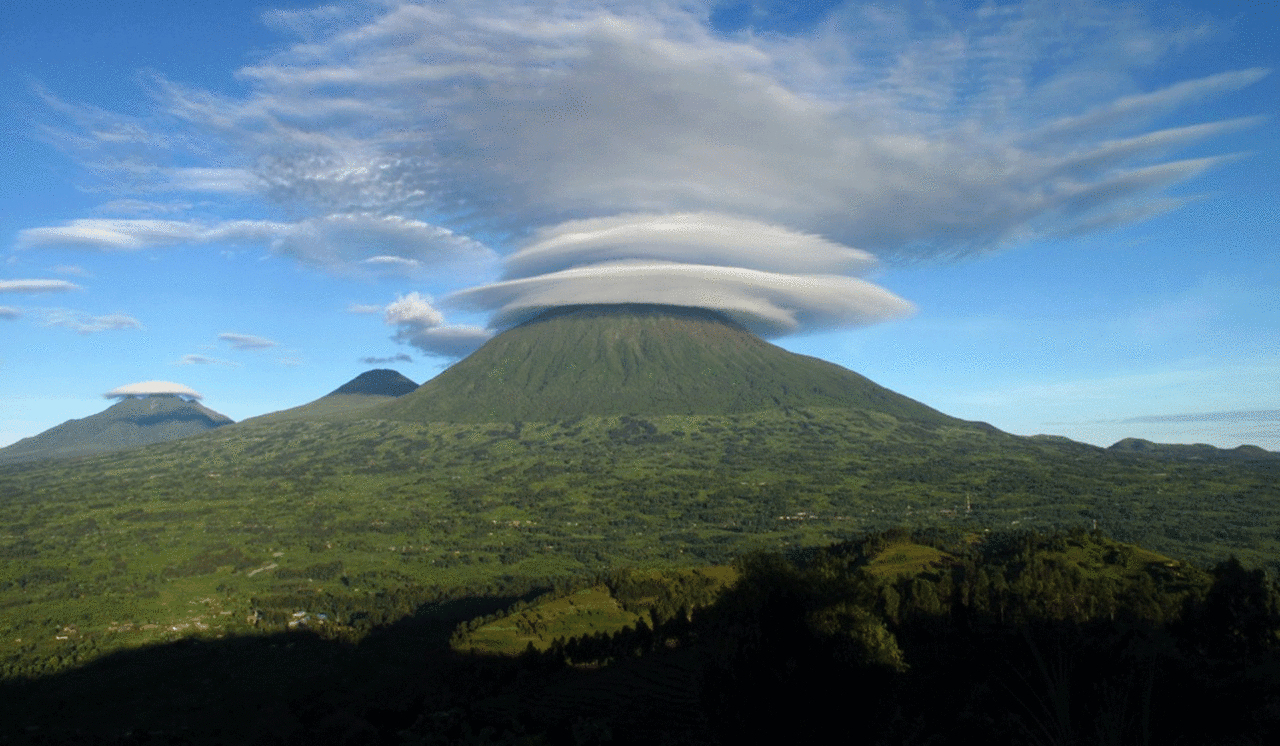 safari-in-rwanda-volcanoes-national-park_05