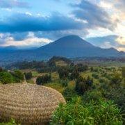safari-in-rwanda_bisate-lodge_10