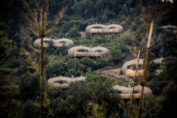 Bisate Lodge @Volcanoes National Park – Rwanda