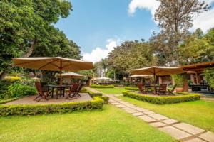 safari-in-tanzania-arusha-coffee-lodge_03