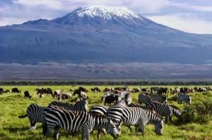 safari-in-tanzania-arusha_06
