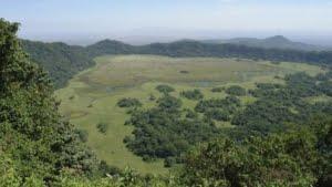 safari-in-tanzania-arusha_08
