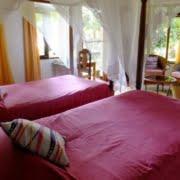 safari-in-tanzania-bougainvillea-safari-lodge_03