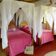 safari-in-tanzania-bougainvillea-safari-lodge_05