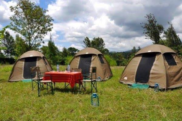 Jambo Campsite @Lake Manyara National Park – Tanzania