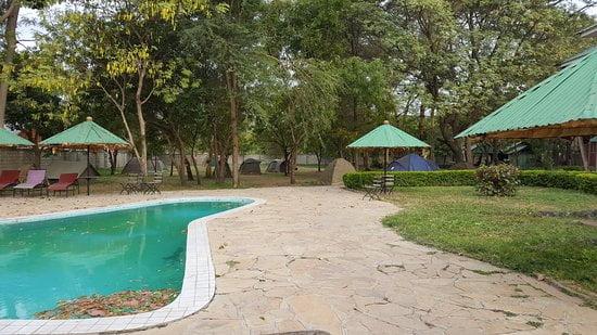 safari-in-tanzania-jambo-campsite_05