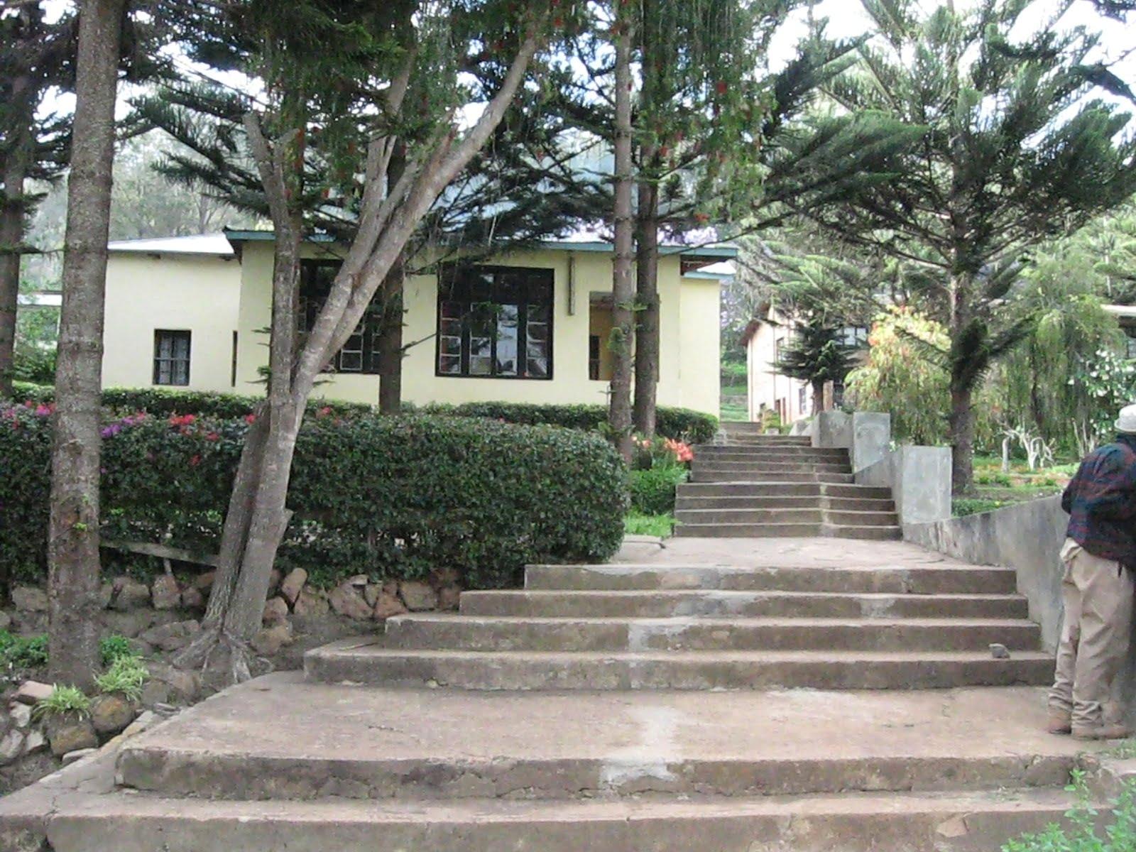 safari-in-tanzania-klooster