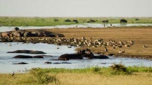 safari-in-tanzania-ngorongoro-region_01