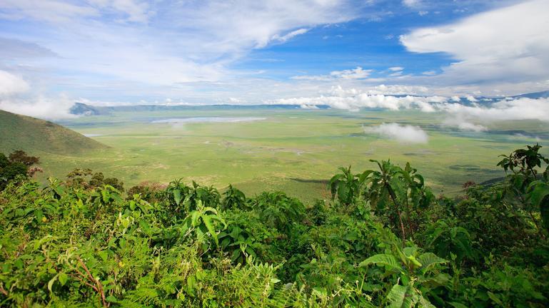 safari-in-tanzania-ngorongoro-region_05