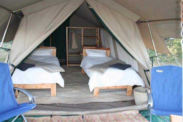 Wilderness Camp @Ngorongoro – Ndutu- Tanzania
