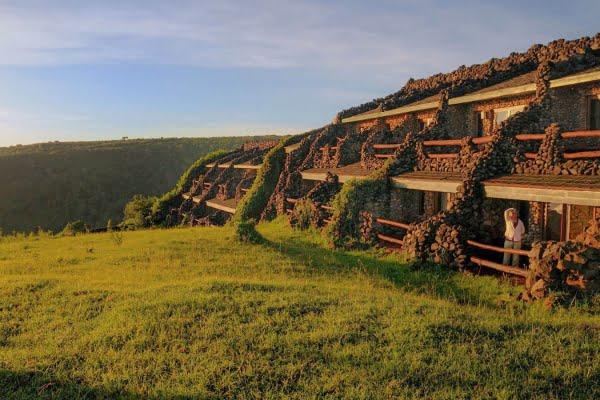 Wildlife Lodge @Ngorongoro – Tanzania