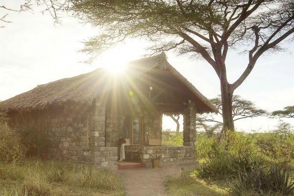 Safari Lodge @Ndutu – Tanzania