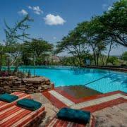 safari-in-tanzania-serengeti-serena-safari-lodge_02