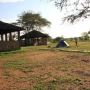 safari-in-tanzania-seronera-campsite_01