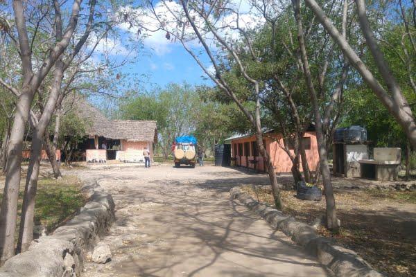 Wild Palm Campsite @Tarangire- Tanzania