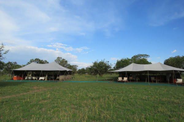 Wilderness Camp @Ngorongoro
