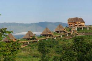safari-in-uganda-kibale-forest-national-park_03