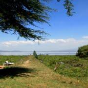 safari-kenia-econemy_carnelleys_camp_1