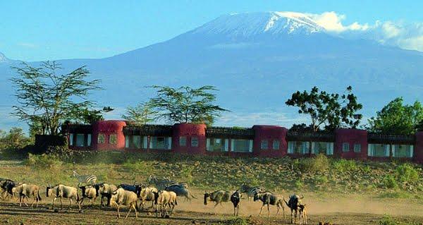 Serena @Amboseli – Kenia