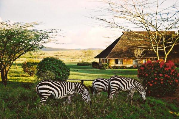Keekorok Lodge @Masai Mara – Kenia