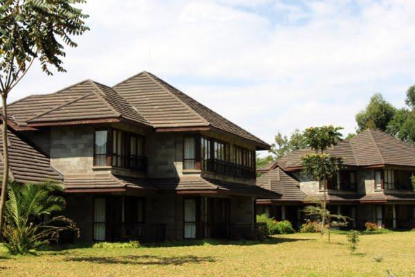 Simba @Lake Naivasha – Kenia