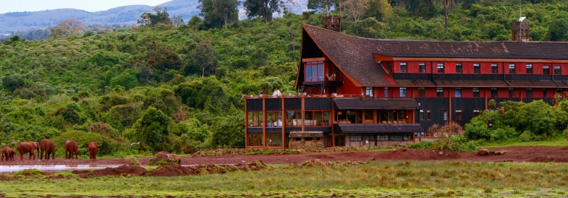 Ark Lodge @Aberdares National Park – Kenia