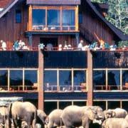 safari-kenia-standaard_ark_lodge_2
