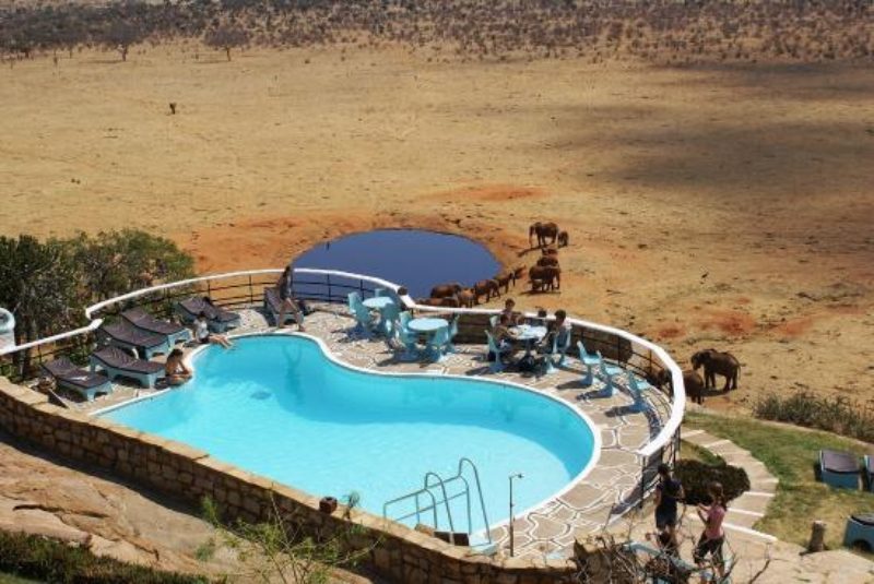 safari-kenia-standaard_voi_wildlife_camp_3