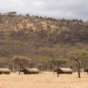 safari-n-tanzania-katikati-tented-camp_06
