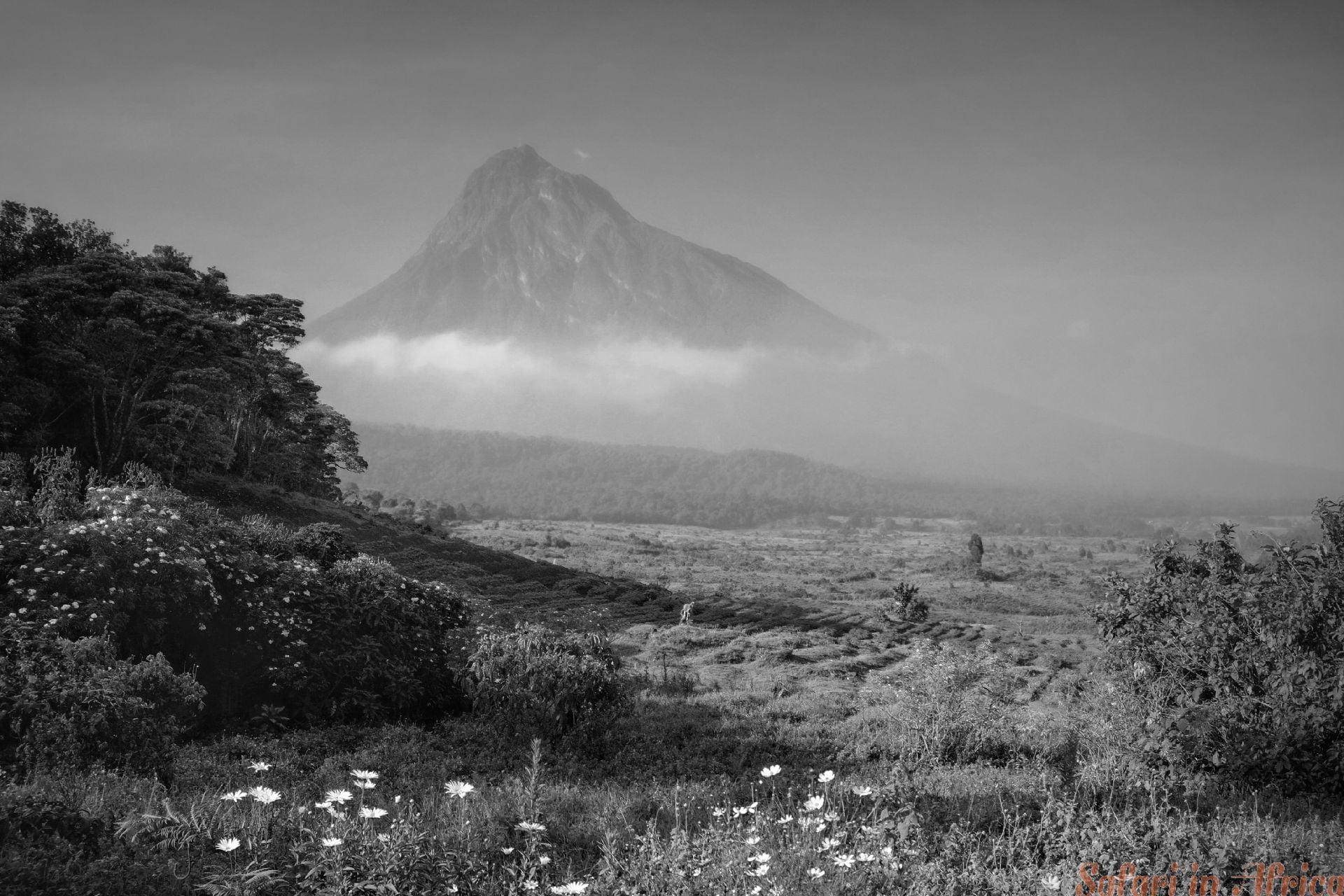 landschap Virunga NP B&W