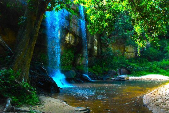 Kenia: 11 dagen Tambo Safari Tour (evt. incl. binnenlandse vlucht)