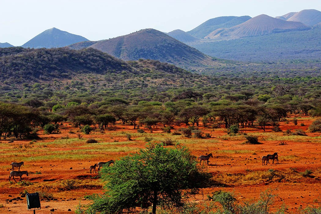tsavo-east-en-west_06