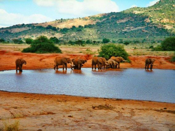 tsavo-east-national-park_04