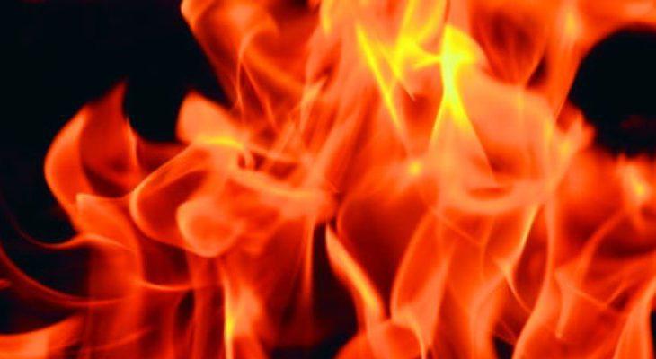 safari-in-kenia-verbranden